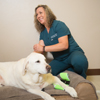 Special Care for Four-Legged Family Members